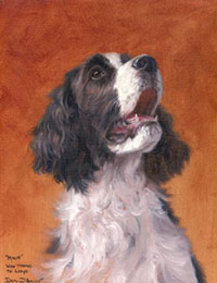"""Millie"" a pet portrait by Dan D'Amico"